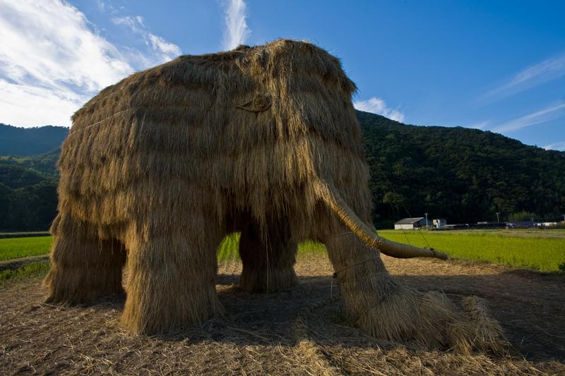 Straw Mammoth