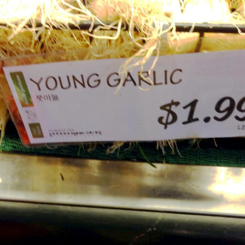 Yung Garlic